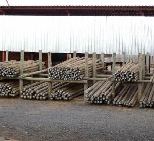 Bulk Timber Sales Plant 2