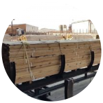 Timber Treatment Icon-01